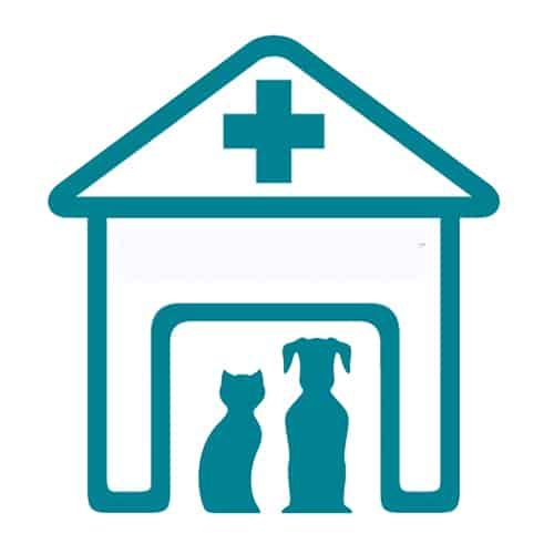 Udine Una Parafarmacia Innovativa Per Animali Di Compagnia Pharmaretail