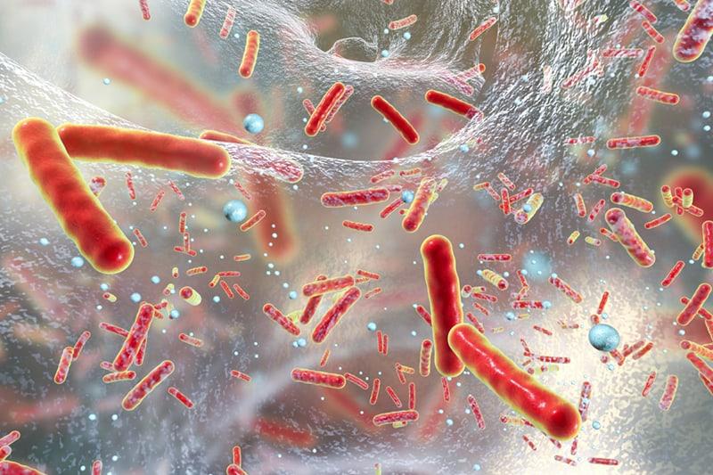Antibioticoresistenza: l'impegno di Apoteca Natura